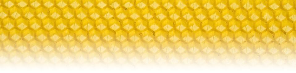 Me Want Honeycomb