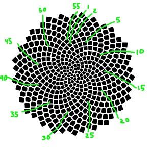 spiralsGreen